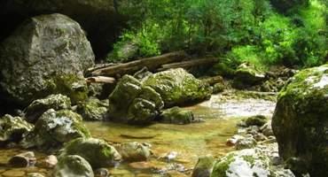 Изучение Гуамского ущелья