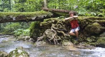Переход к ущелью реки Цице